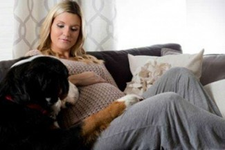 your dog knows that you are pregnant?