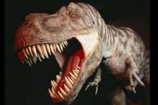 أسرار الفك القاتل للديناصور تي ريكس