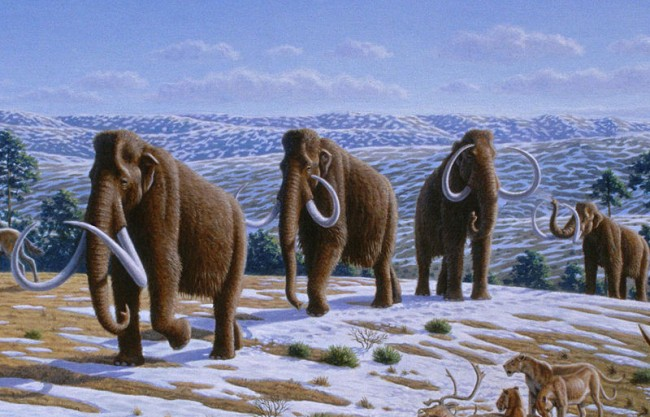 Beautiful extinct animals we wish we could see again