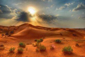 هل يمكن أن تكون الصحراء أجمل من غيرها من البيئات المخضرة؟ 4 أسباب تجعلك تفكر في الصحراء بشكل مختلف
