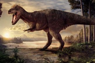 Did Dinosaurs Really Live Millions of Years Ago?