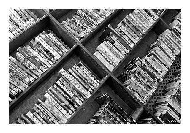 Why Readers Read: What Every Writer Needs to Know